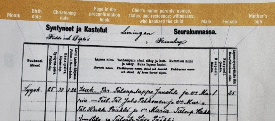 Finland Genealogy by popular US online genealogists, Price Genealogy: image of a Finnish birth record page.