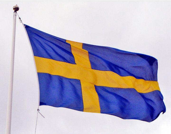Swedish Genealogy by popular US online genealogists, Price Genealogy: image of the Swedish flag.