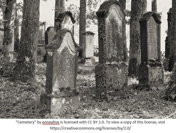 Cemetery Records by popular US online genealogists, Price Genealogy: image of gravestones in between trees.