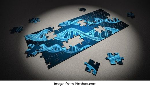 Genetic Genealogy by popular US online genealogists, Price Genealogy: image of a DNA puzzle.
