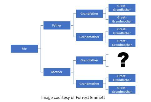 Genetic Genealogy by popular US online genealogists, Price Genealogy: image of a genealogy chart.