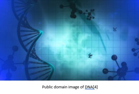 Genetic Genealogy by popular US online genealogists, Price Genealogy: image of a double helix.