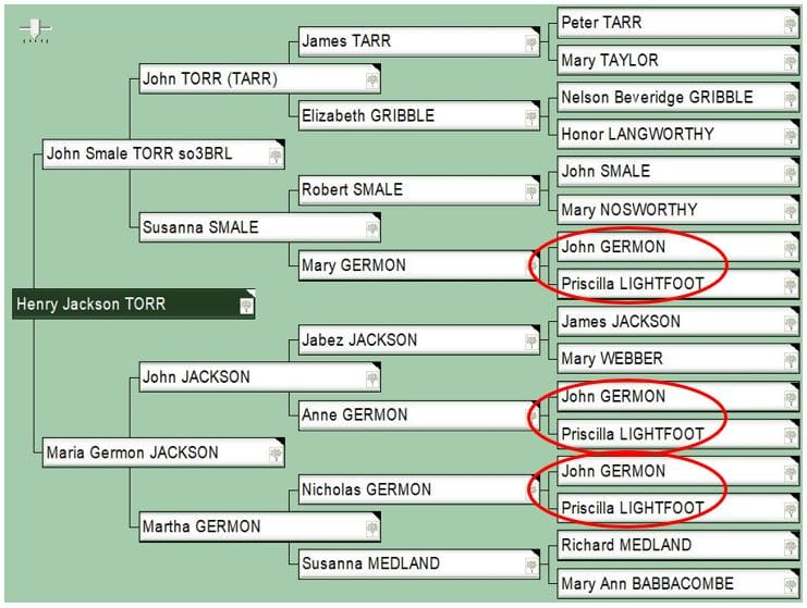 DNA Research by popular US online genealogists, Price Genealogy: digital image of a family pedigree chart.