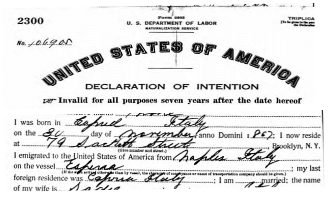 Italian Ancestors by popular US online genealogists, Price Genealogy: image of a United States of America declaration of intention.